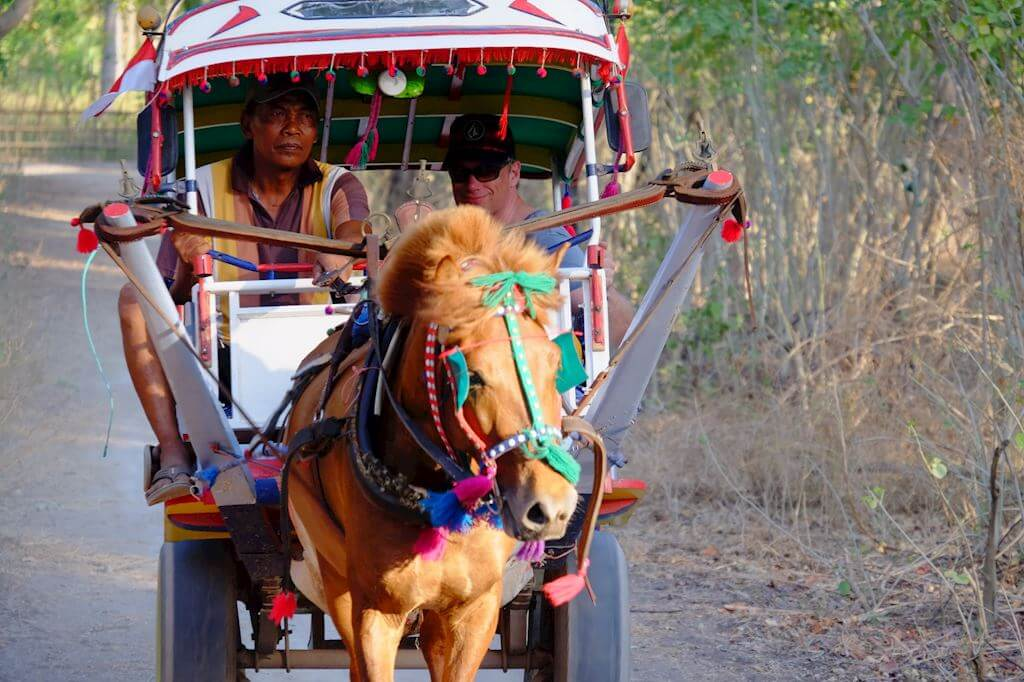 Gili Air Horse Carriage